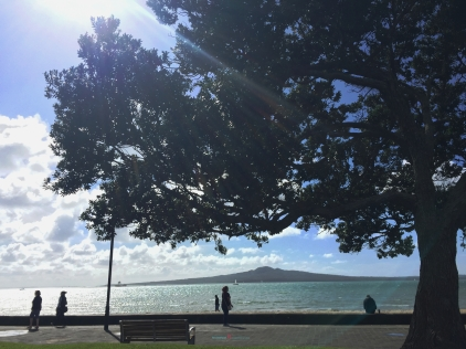one of the greatest urban escapes in Auckland is Mission Bay.. away from the office.... with Rangitoto Island in view..